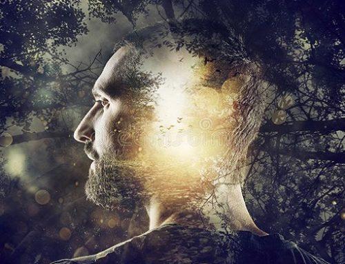 Los patrones de la mente